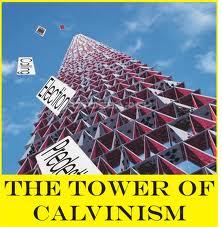 calvinism 8