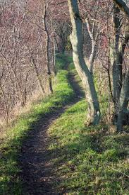 upptrampad stig