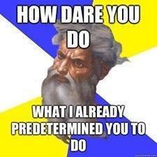 calvinism 4